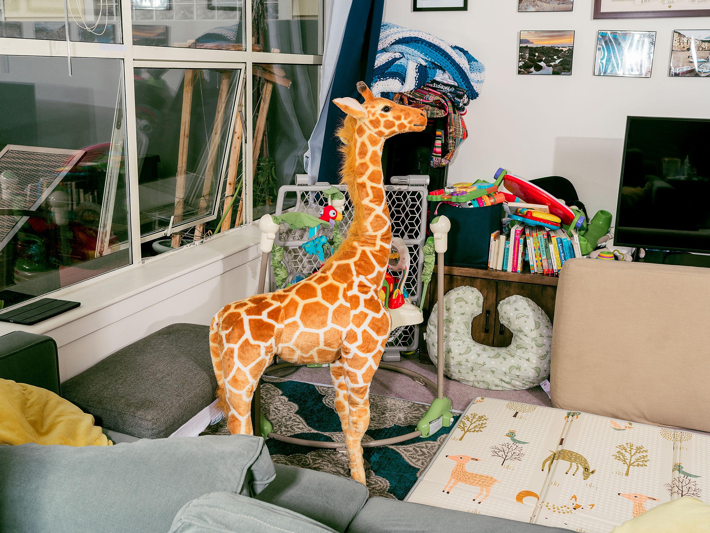 Jani the giraffe at home in San Francisco.