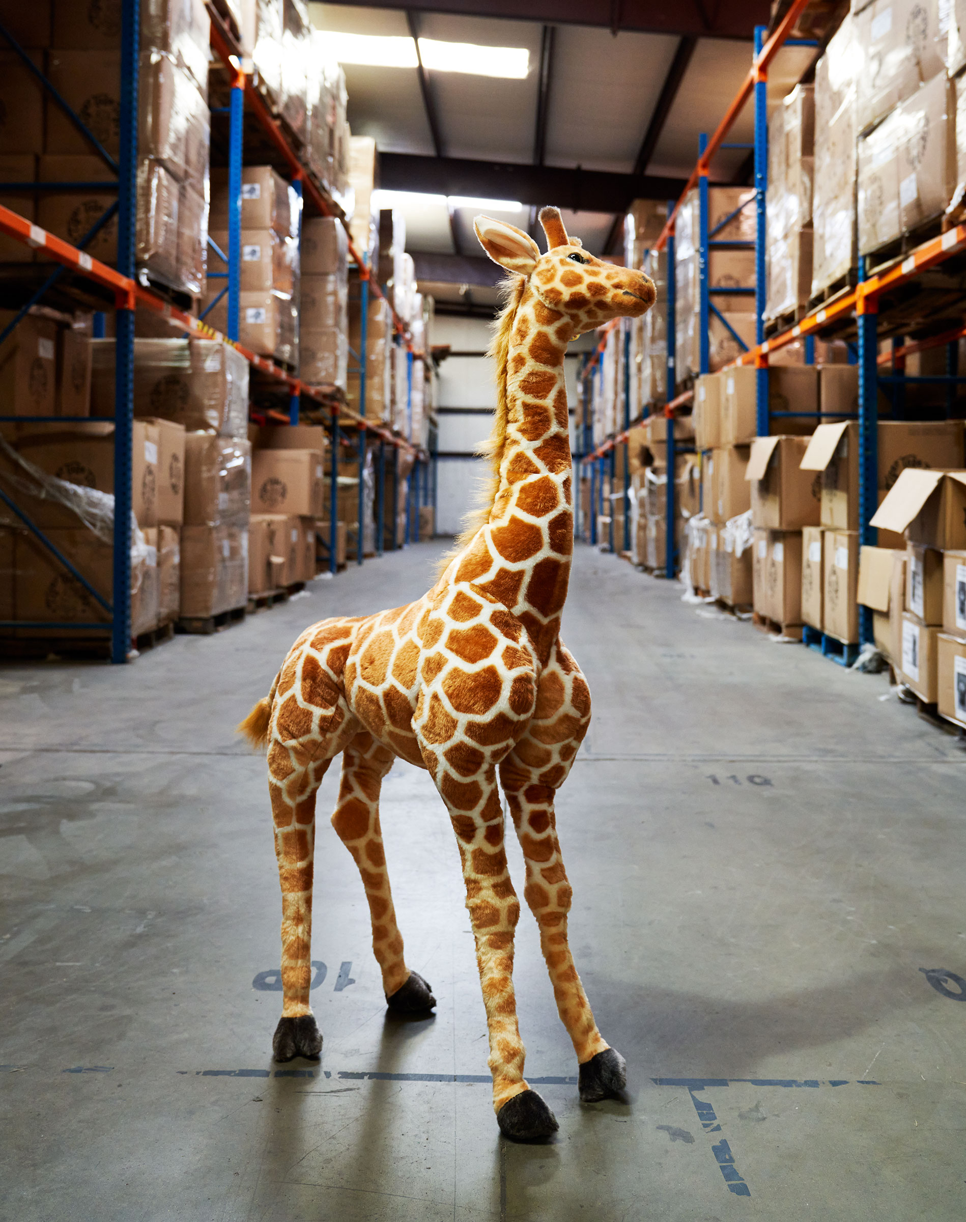 Jani the giraffe at the Viahart distribution facility in Wills Point, Texas on July 23, 2021.