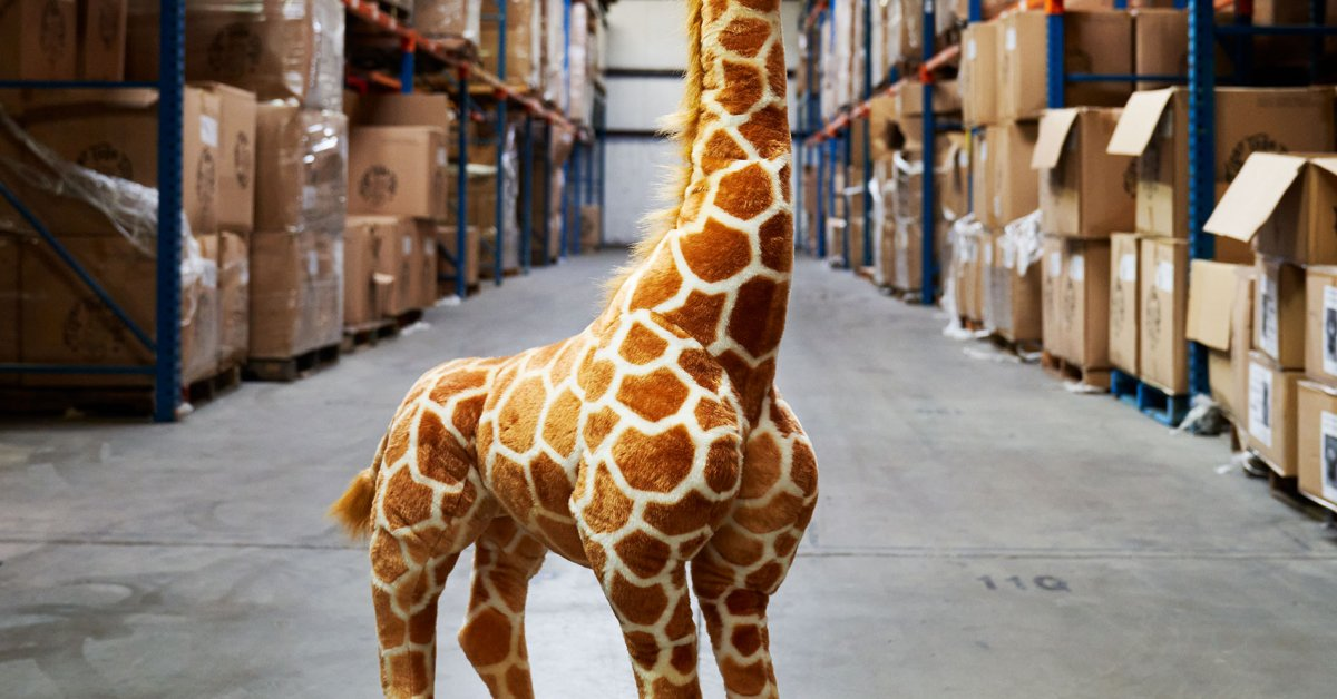 J ani, a 4-foot plush giraffe, arrived on my doorstep in mid-July, her neck bent backwards so that she could fit in the FedEx box, her brown eyes glas