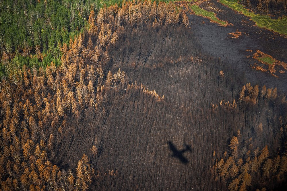 This aerial picture shows the shadow of an aircraft of the Air Forest Protection Service flying over a burned forest outside the village of Berdigestyakh, in the republic of Sakha (Yakutia) in Siberia, Russia on July 27.