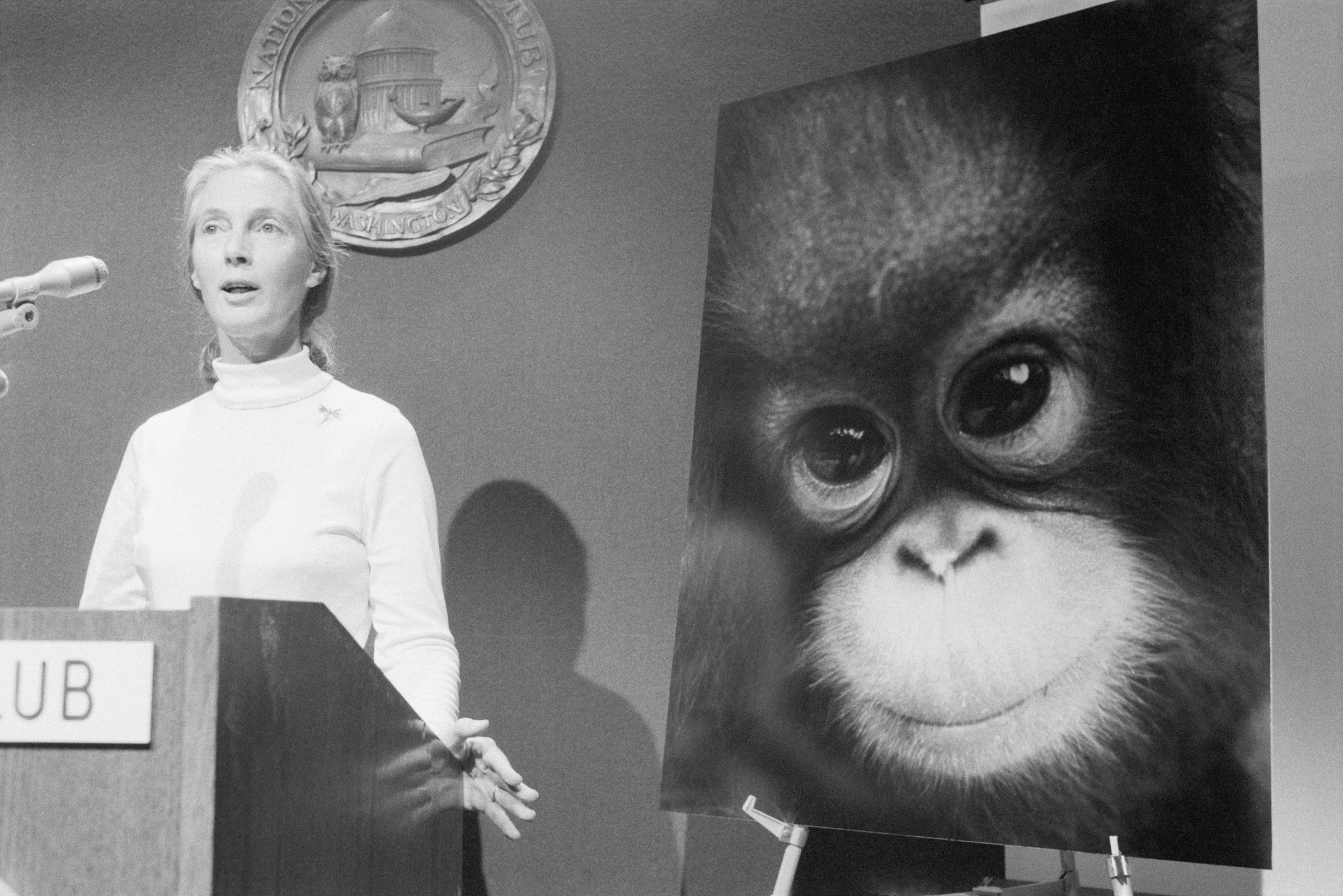 The Enduring Hope of Jane Goodall