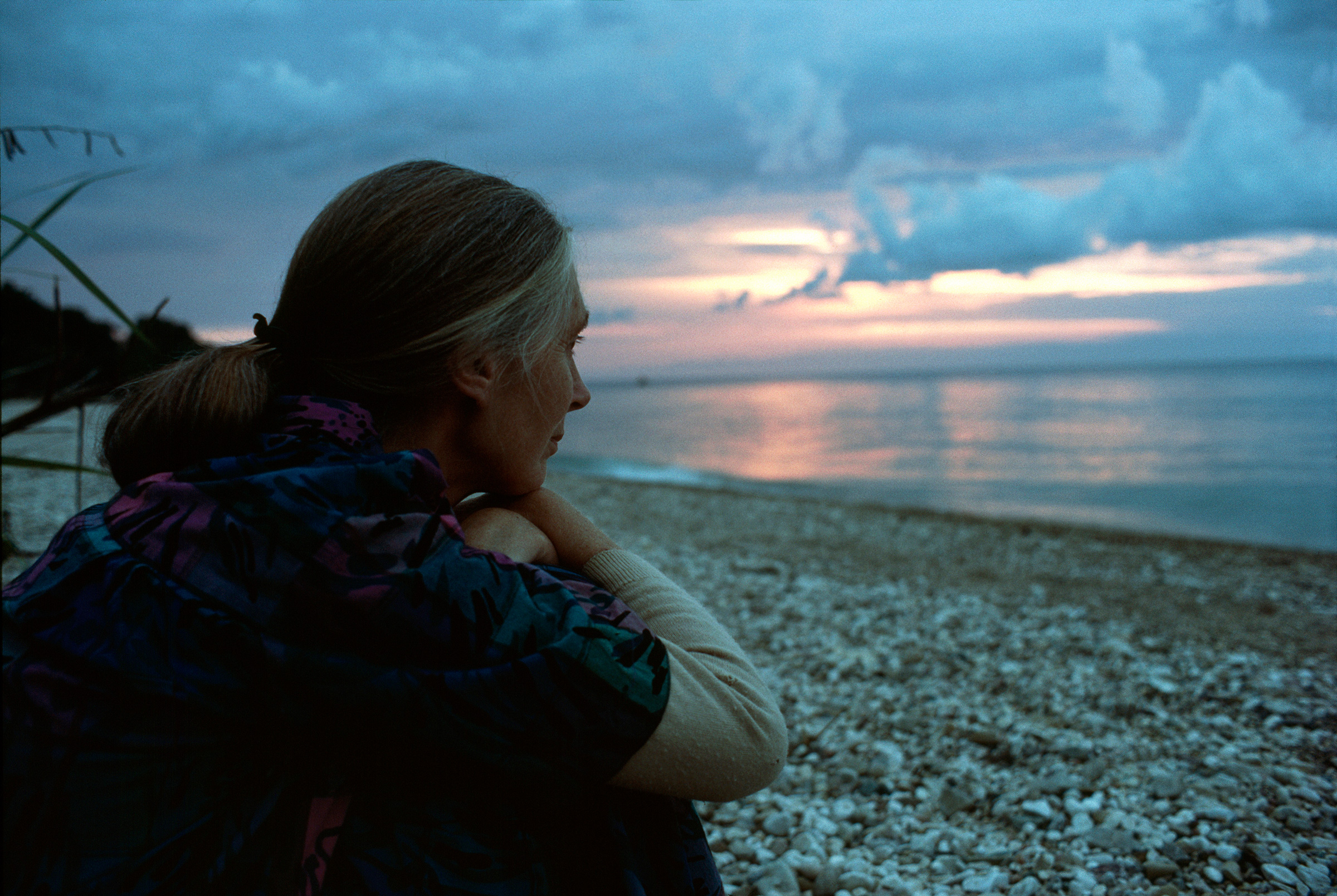 """Goodall, pictured in Tanzania in 1989, has long valued solitude: """"If you're alone, you feel part of nature,"""" she says"""