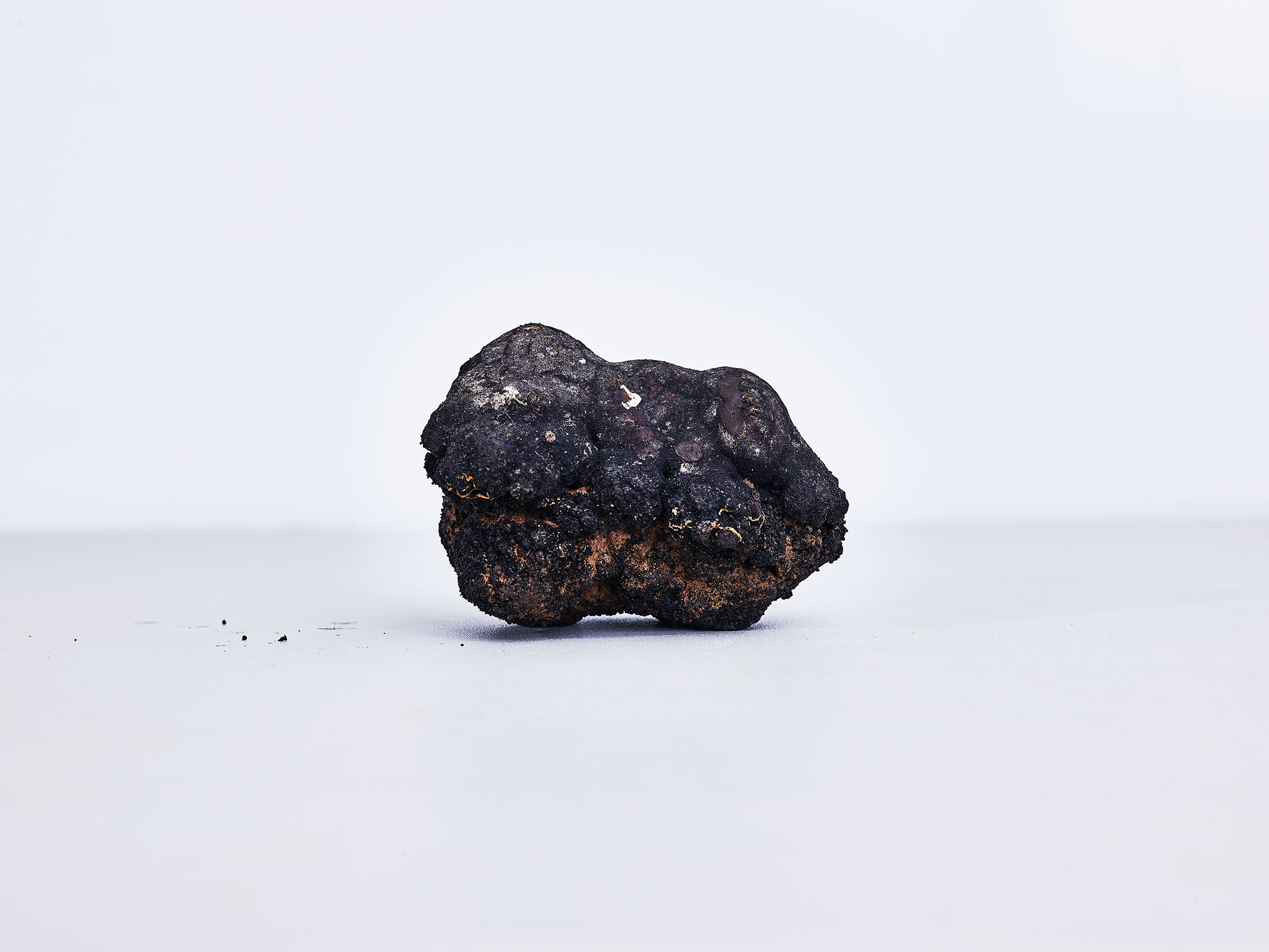 A polymetallic nodule, an amalgamation of nickel, cobalt, manganese and other rare earth metals, formed through a complex biochemical process.